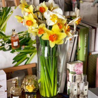 Как ещё заманивать Весну, как не яркими ароматными букетами! 💛🍃🤍  #YuliyaKozda #ЮлияКозда #spring #april #springtime #springmood #mood #bloom #blooming #bloomingdays #bouquet #bloomingbouquet #daffodils #blossom #beauty #aromatherapy #flowers #flowerstagram #flowerpower #flowerslovers #весна #апрель #нарциссы #букет #цветение #аромат