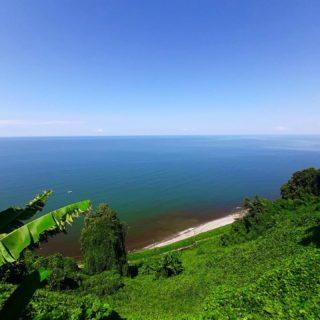 Postcards from my 💙 @pkozda 🙏🏻  #batumi #georgia #sea #blacksea #beauty #view #beatifulview #endlesssea #horizon #sky #nature #botanical #botanicalgarden #summertime #traveling